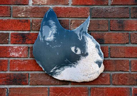 Cat sign, on front of hospital